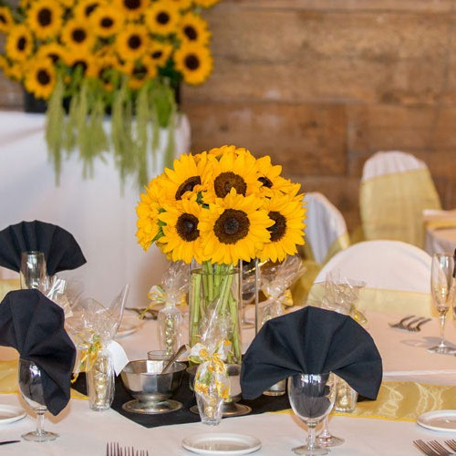 Best Corporate Event Facility in Orange County